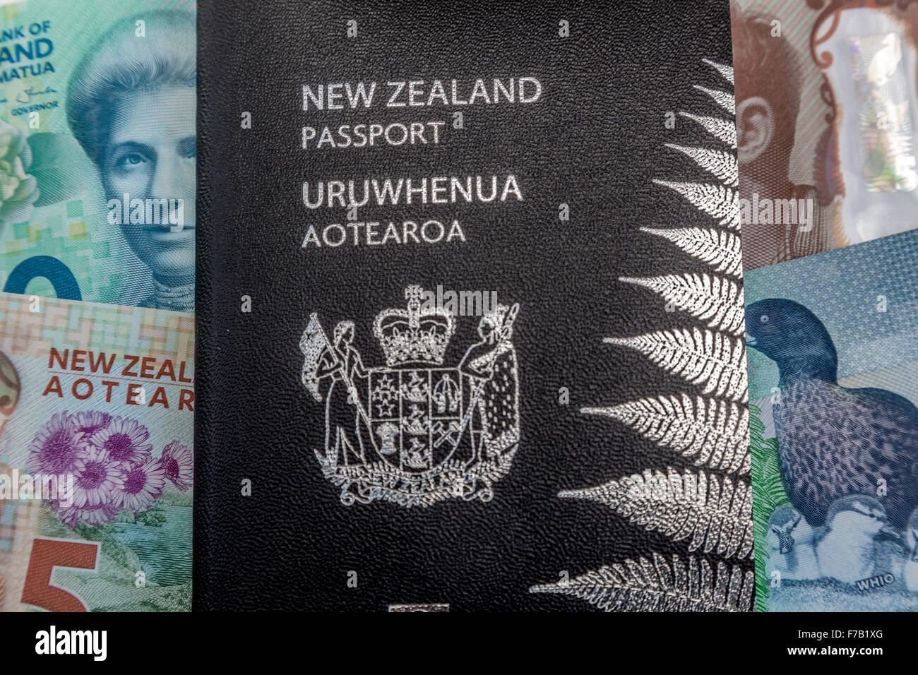 New updated five and ten dollar New Zealand polymer bank notes NZD, $5 and $10, and  kiwi passport - Stock Image