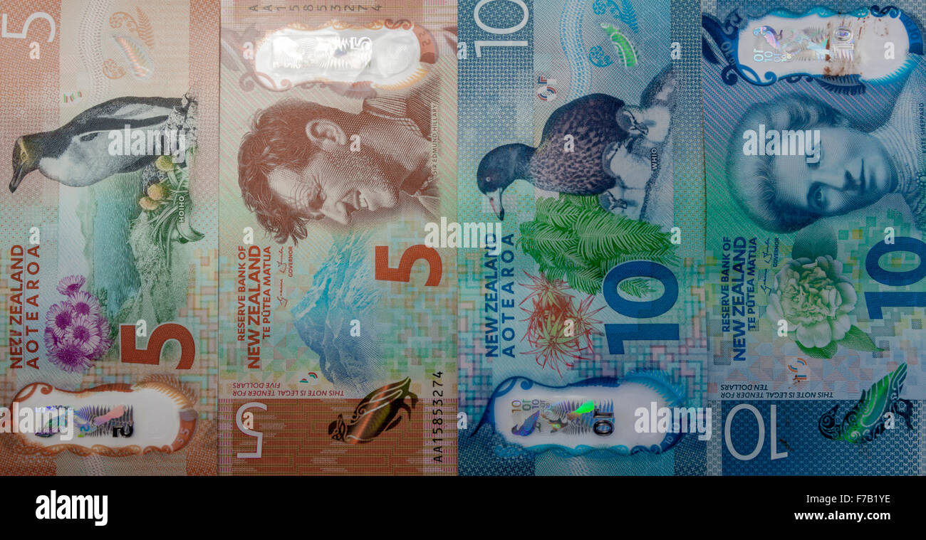 New updated five and ten kiwi dollar  New Zealand plastic polymer bank notes, NZD $5 and $10, both sides. - Stock Image