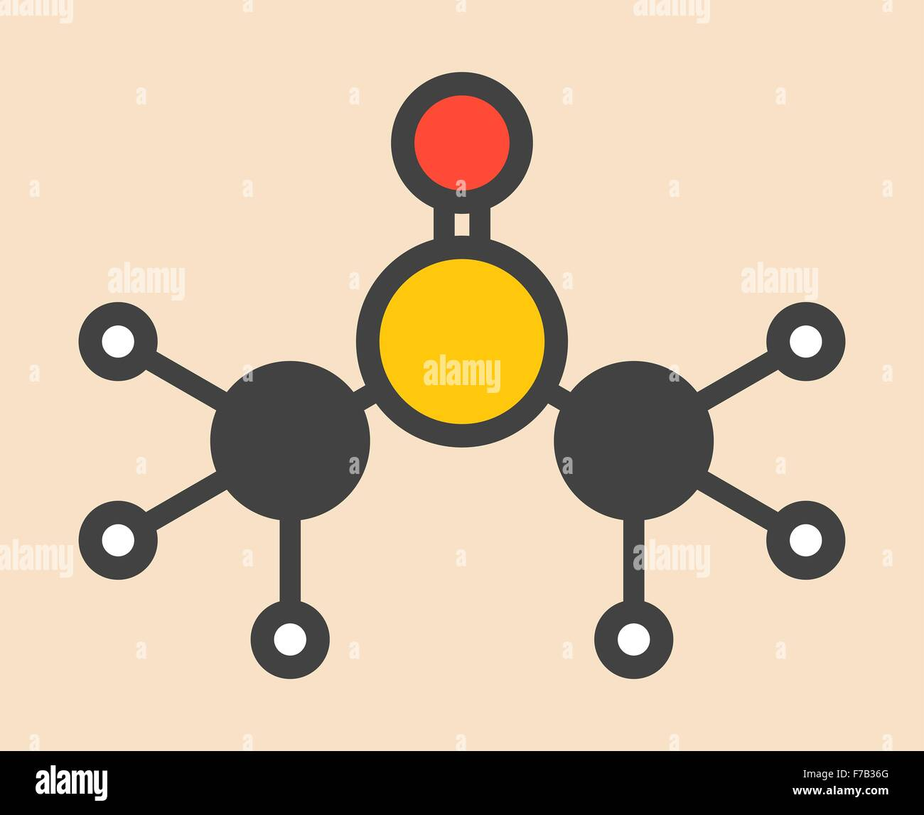 Dimethyl sulfoxide (DMSO solvent molecule). Stylized skeletal formula (chemical structure). Atoms are shown as color - Stock Image