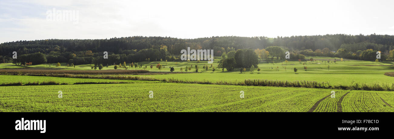 Golf course, Austria, Styria, diverse, Bad Waltersdorf - Stock Image