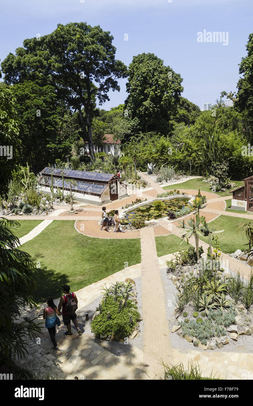 Rio de Janeiro, botanical garden, Jardim Botanico, Brazil - Stock Image
