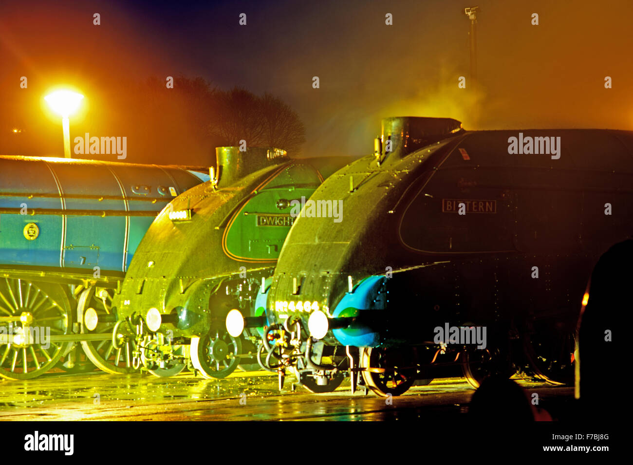 Mallard 75th Anniversary, The Great Gathering at Locomotion Shildon - Stock Image