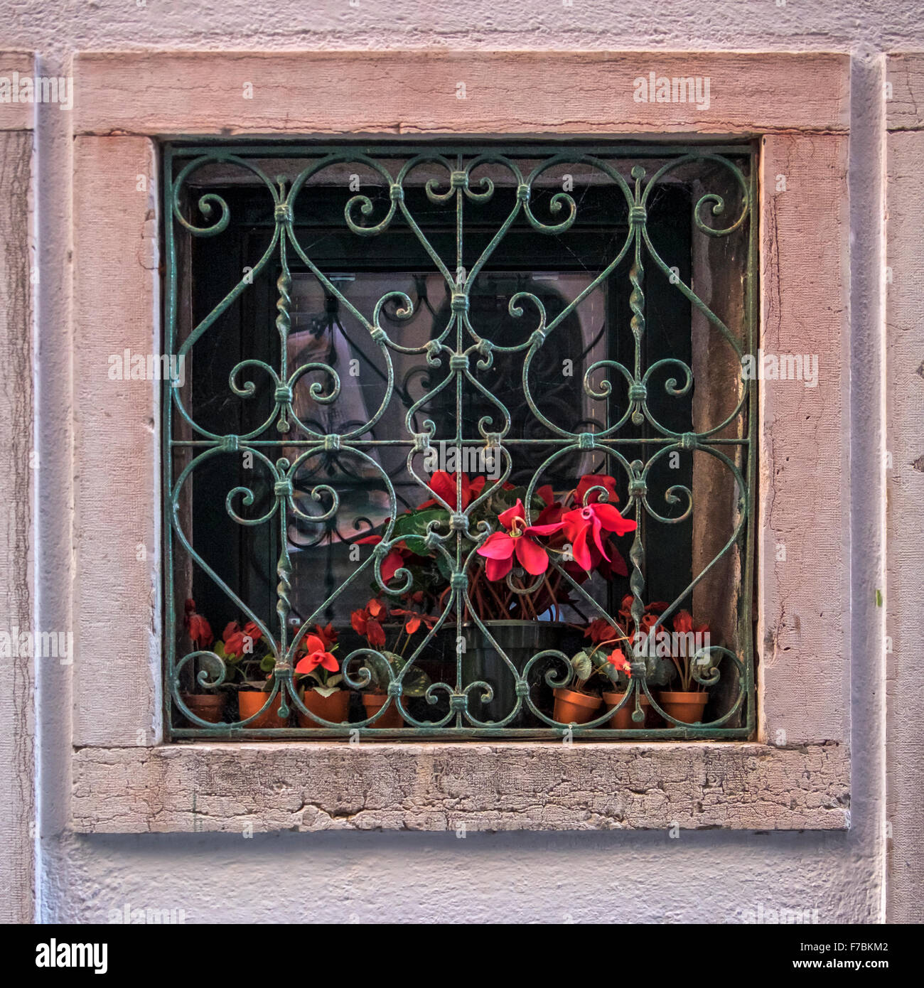 Venice Italy House exterior building detail, window with marble surround, wrought iron burglar proofing & pot plant Stock Photo