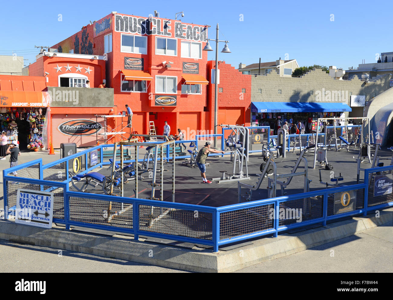 Muscle Beach Venice Ca