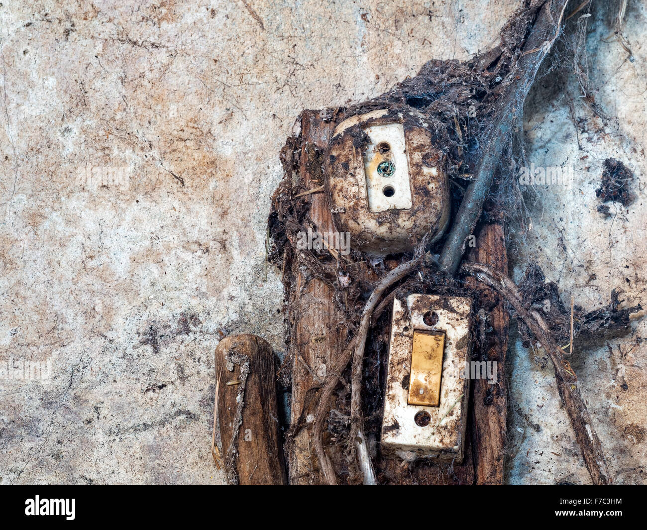 Old wiring with cobwebs. Health and safety etc. - Stock Image