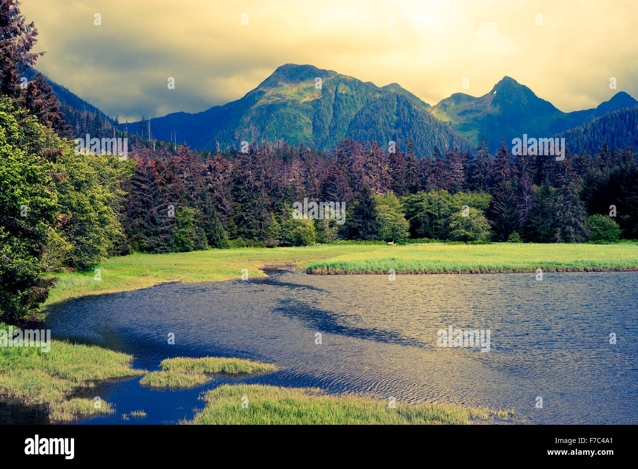 Scenic view of estuary and mountains near the Starrigavan River's mouth, Tongass National Forest,  Sitka, Alaska, - Stock Image