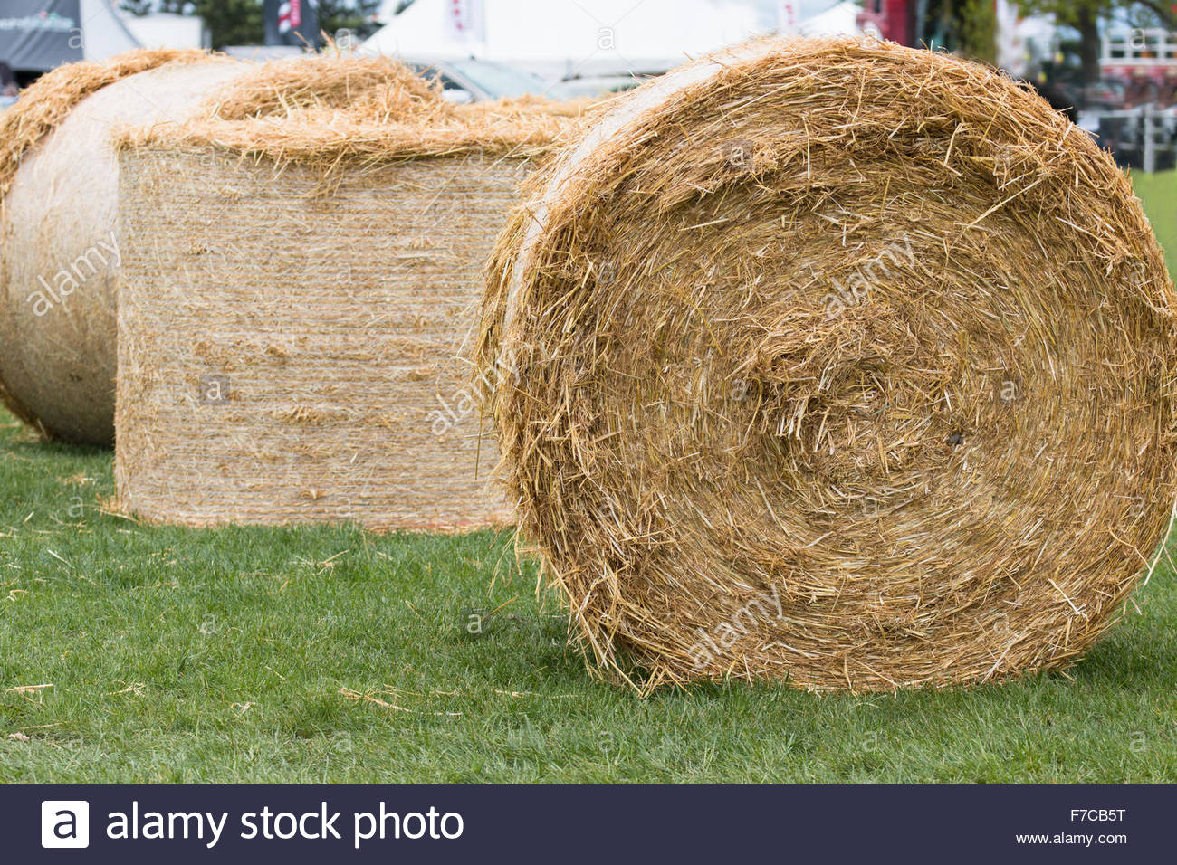 Three hay bales on the grass - Stock Image