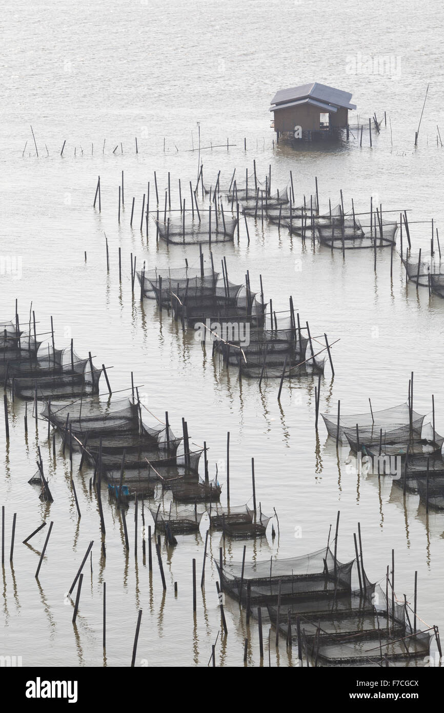 Fish farming in Songkhla lake in southern Thailand Stock Photo ...