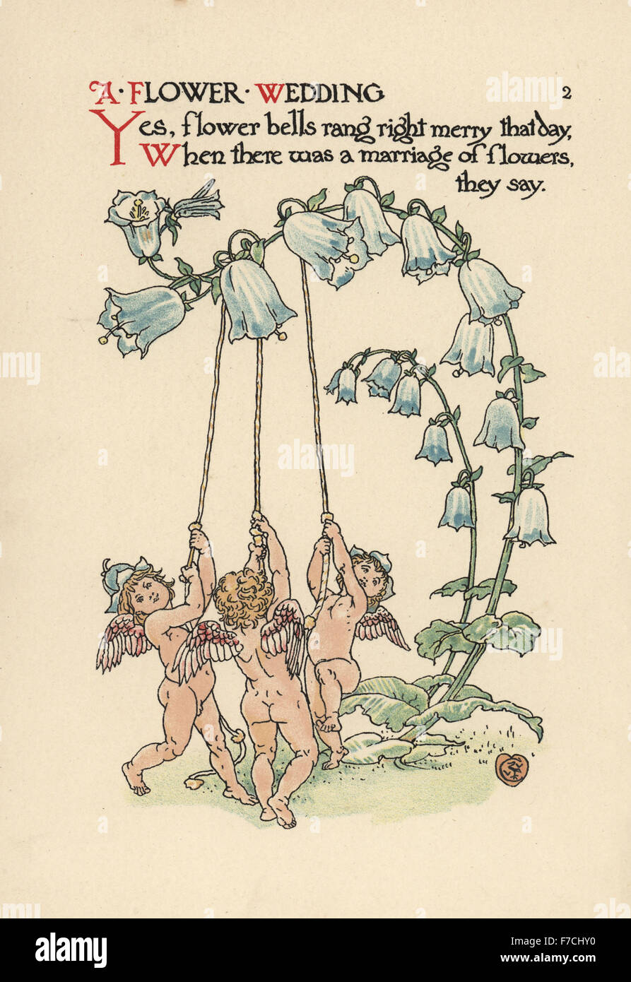 Three cupids ringing bellflowers, Campanula latifolia. Chromolithograph after an illustration by Walter Crane from - Stock Image