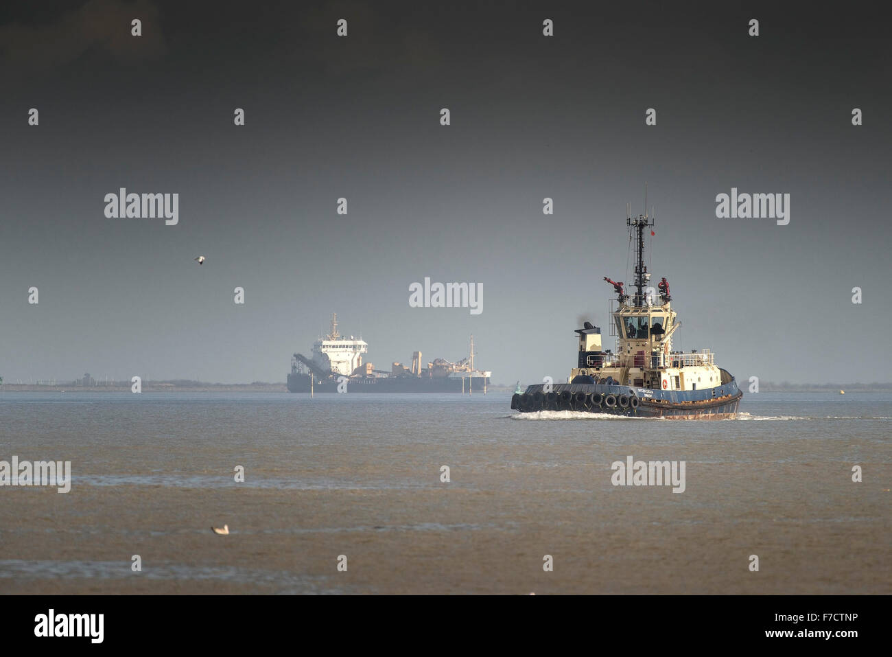 The tug Svitzer Cecilia steams upriver on the River Thames. - Stock Image