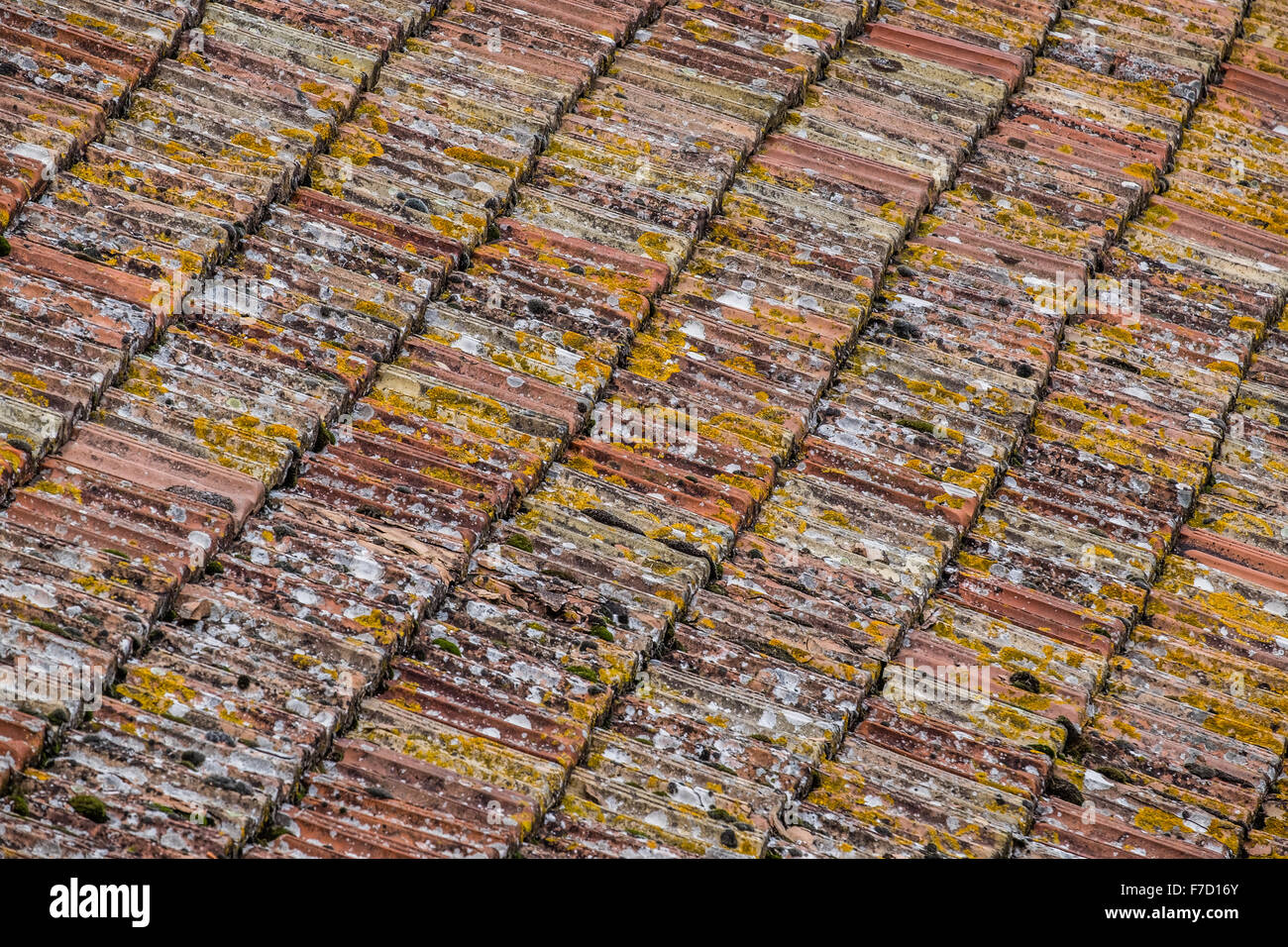 Italian rooftop tiles - Stock Image