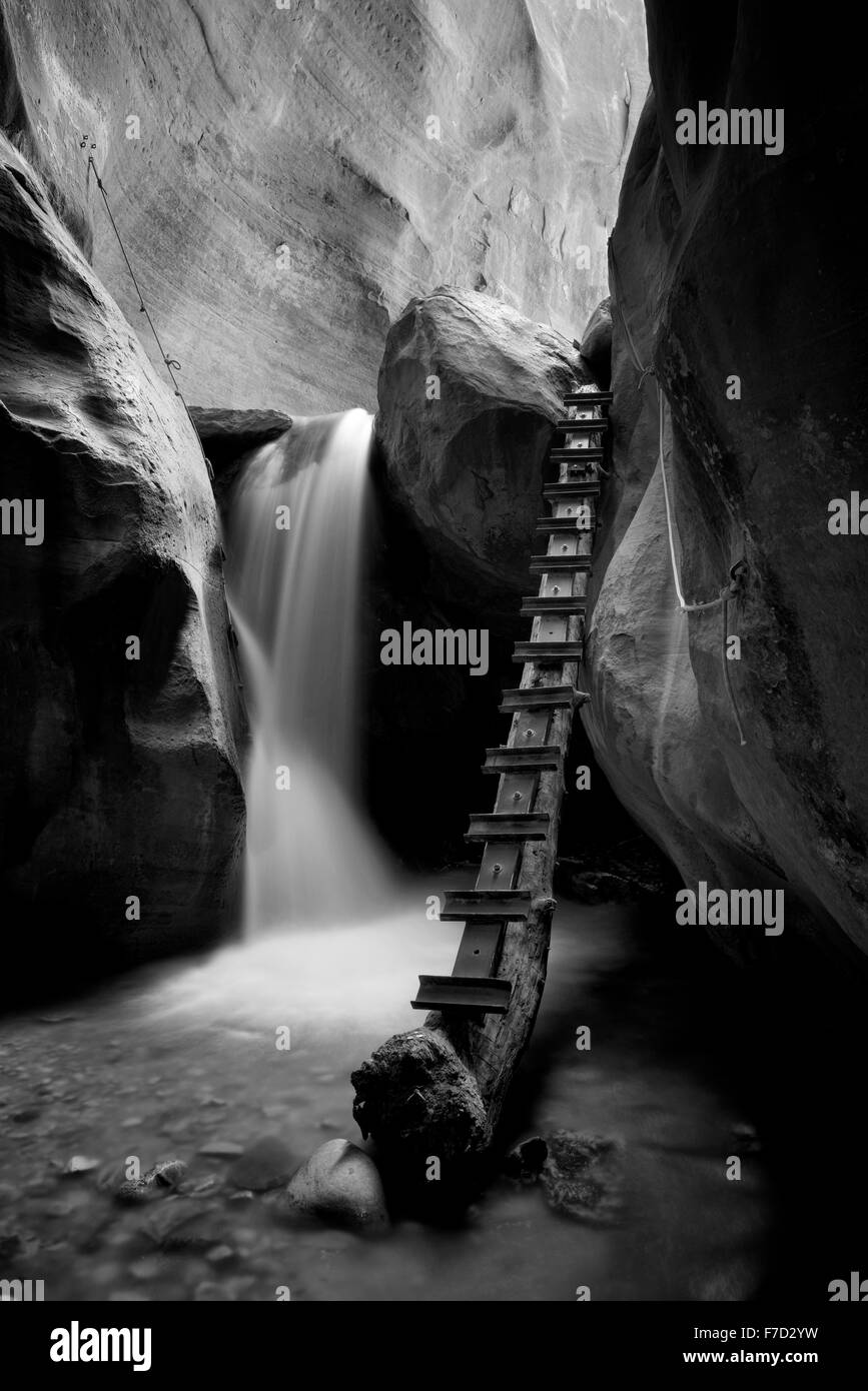 Waterfall with ladder in Kanarra Creek. Utah. Dixie National Forest - Stock Image