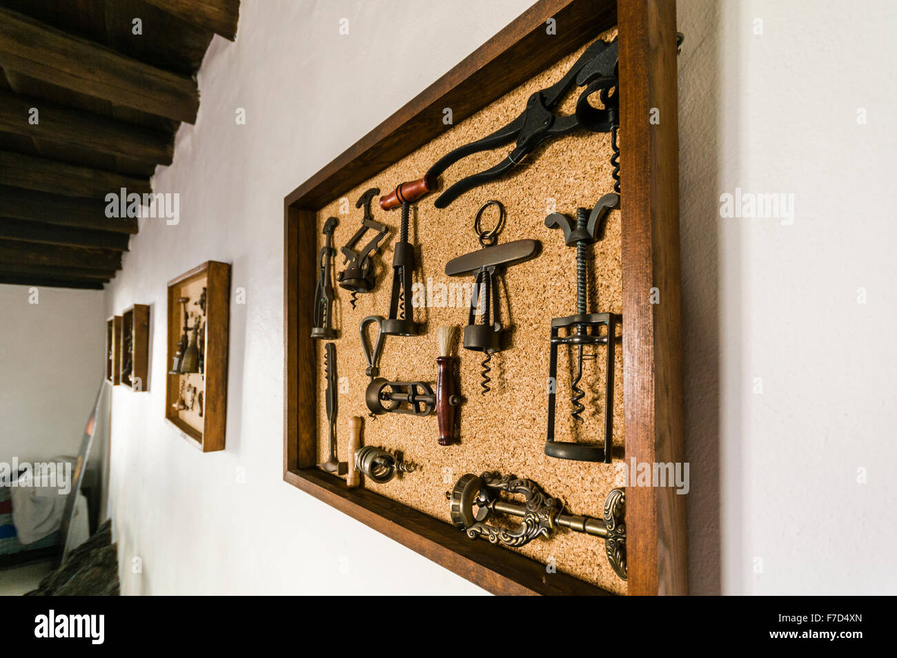 Antique wine bottle corkscrews on display in picture frames at a vineyard museum in Lanzarote - Stock Image