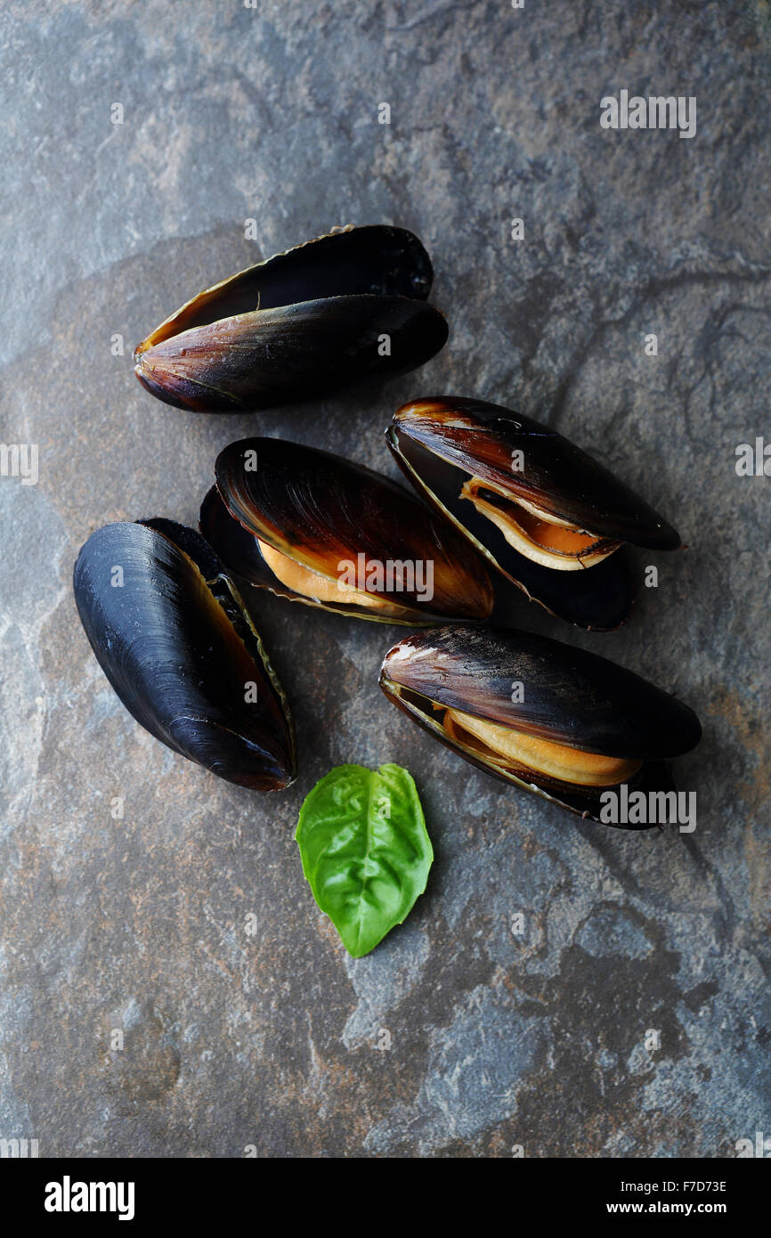 mussels and basil leaves, food top view - Stock Image