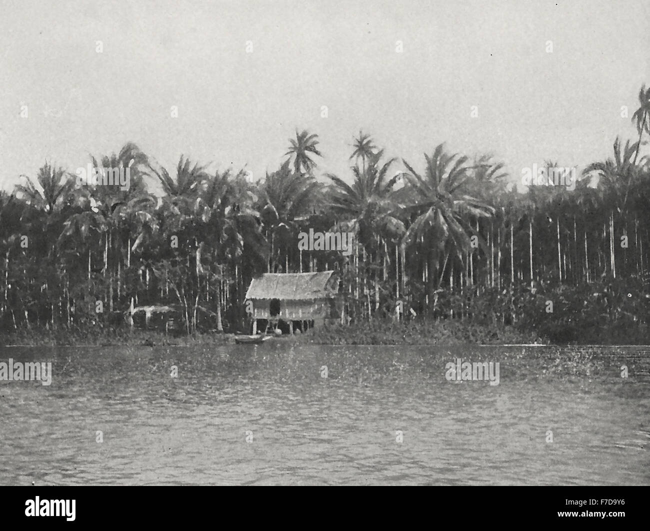 A native house on the Klawg to Ratburi - Picturesquely, but uncomfortably (mosquitos) situated in a grove of cocoa - Stock Image
