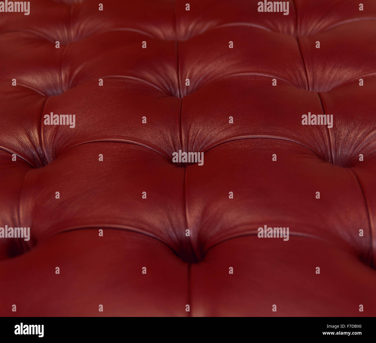 Quilted upholstery. - Stock Image
