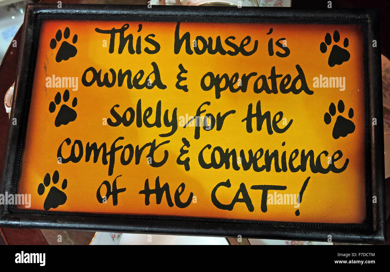 This house is owned and operated solely for the comfort & Convenience of the cat - Stock Image