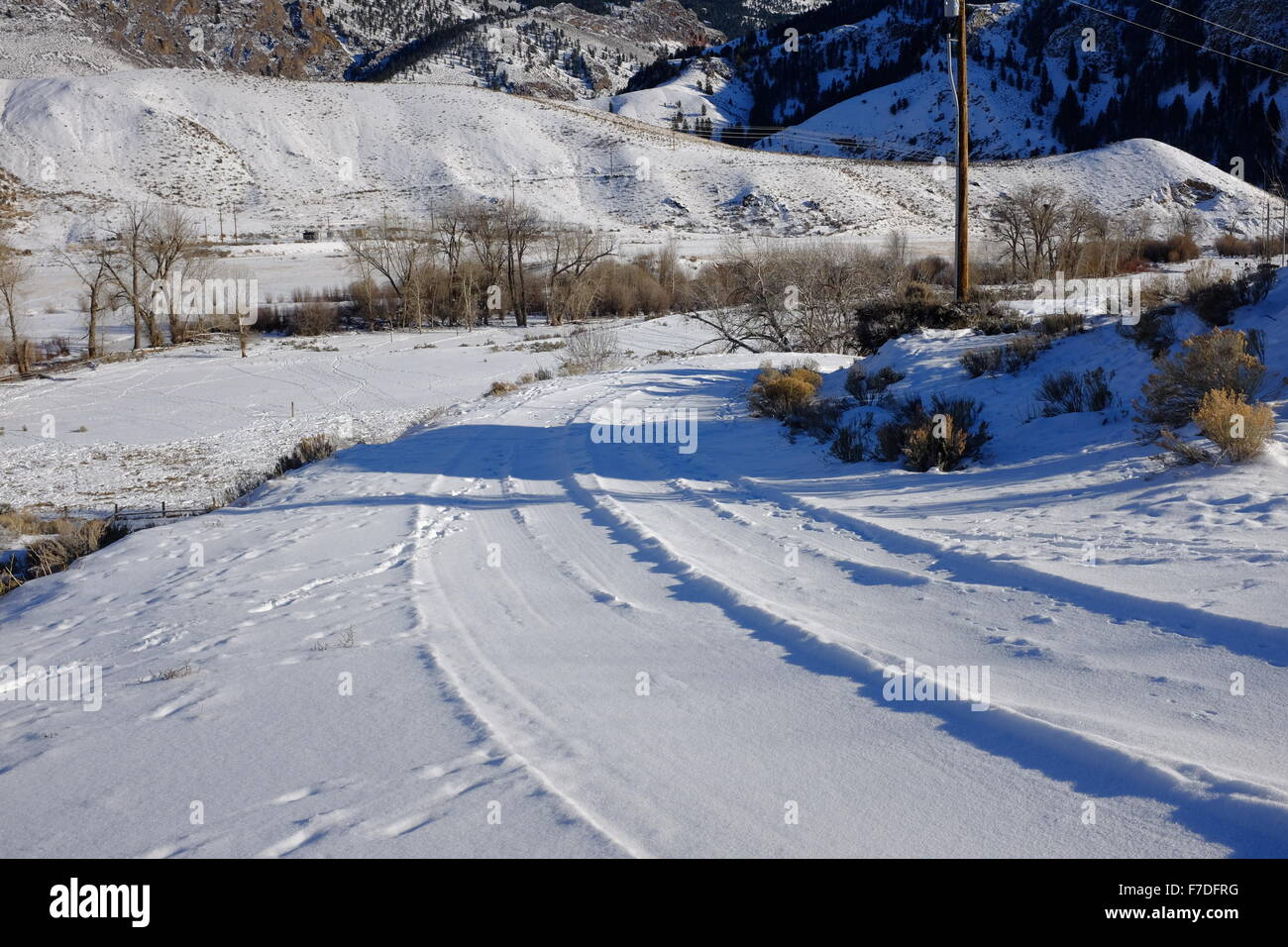 Winter snow scenes with animal tracks and frost in the trees; snow on a rural road - Stock Image