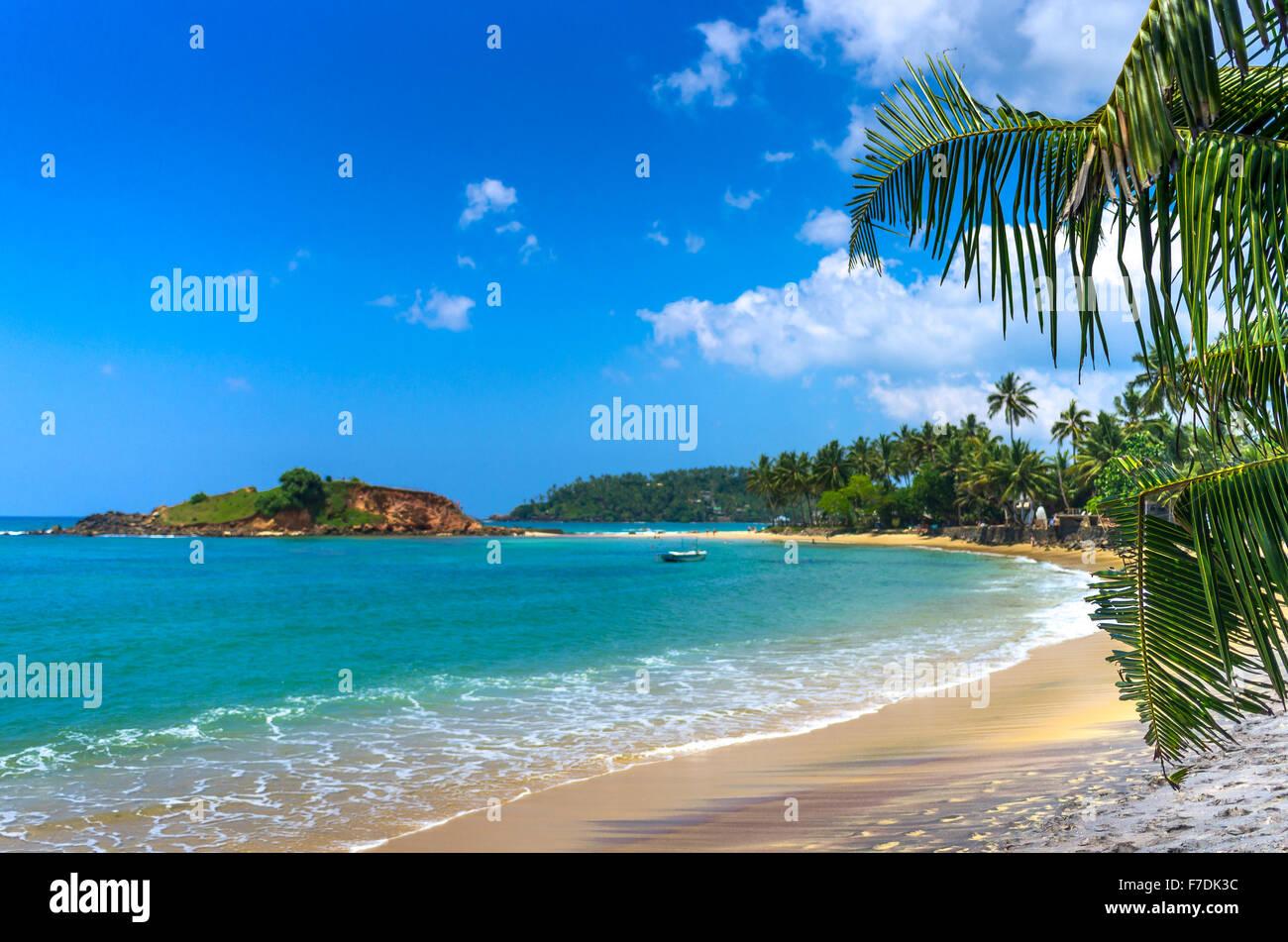 Tropical beach in Sri Lanka - Stock Image