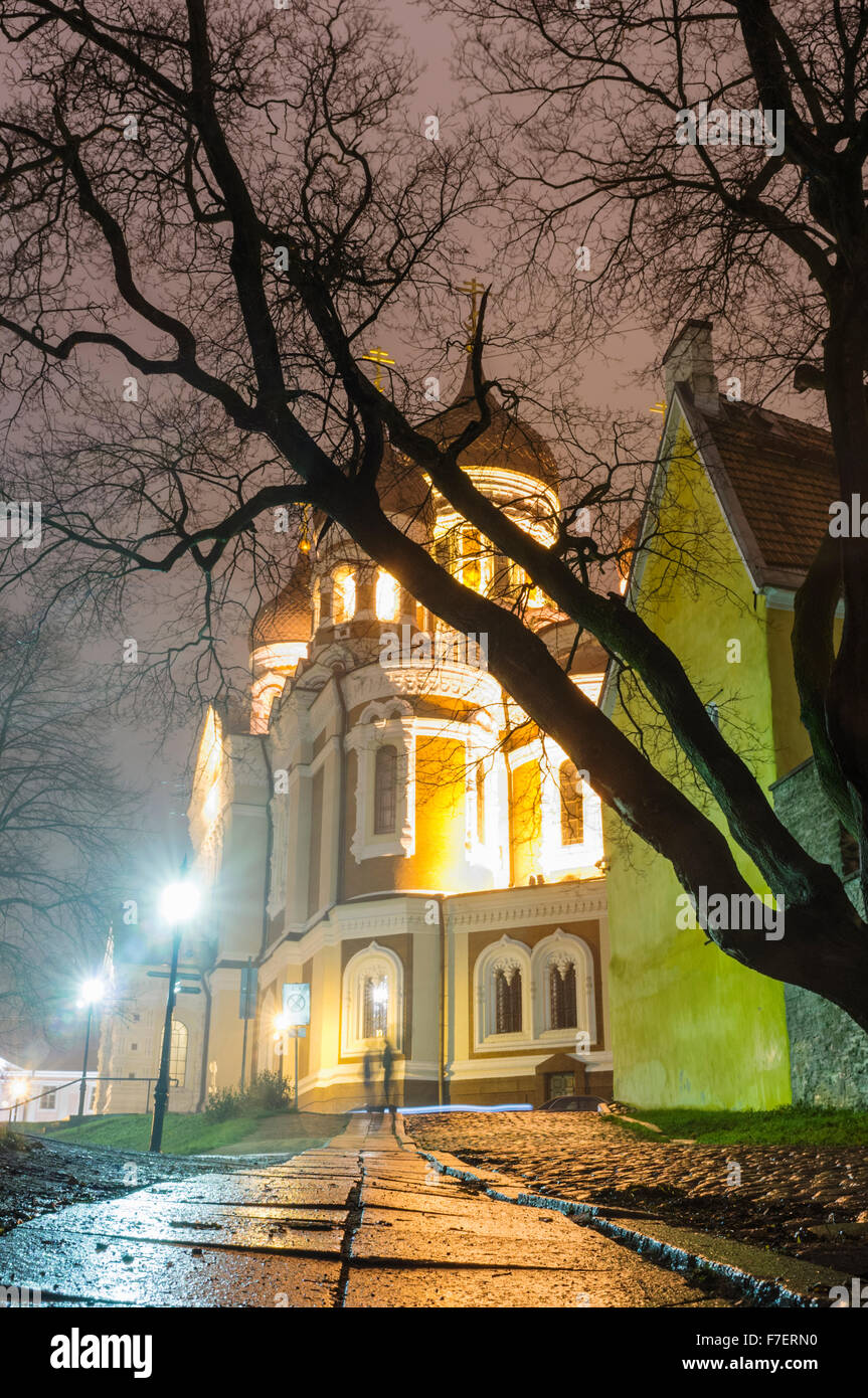 Alexander Nevsky Cathedral illuminated by night. Tallinn, Estonia Stock Photo