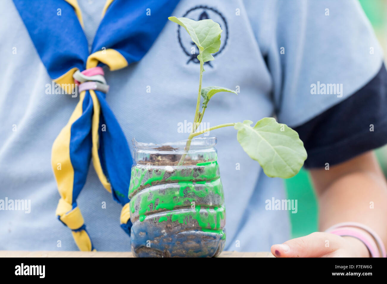Spanish Scout potting cuttings at climate change awareness event in Spain - Stock Image