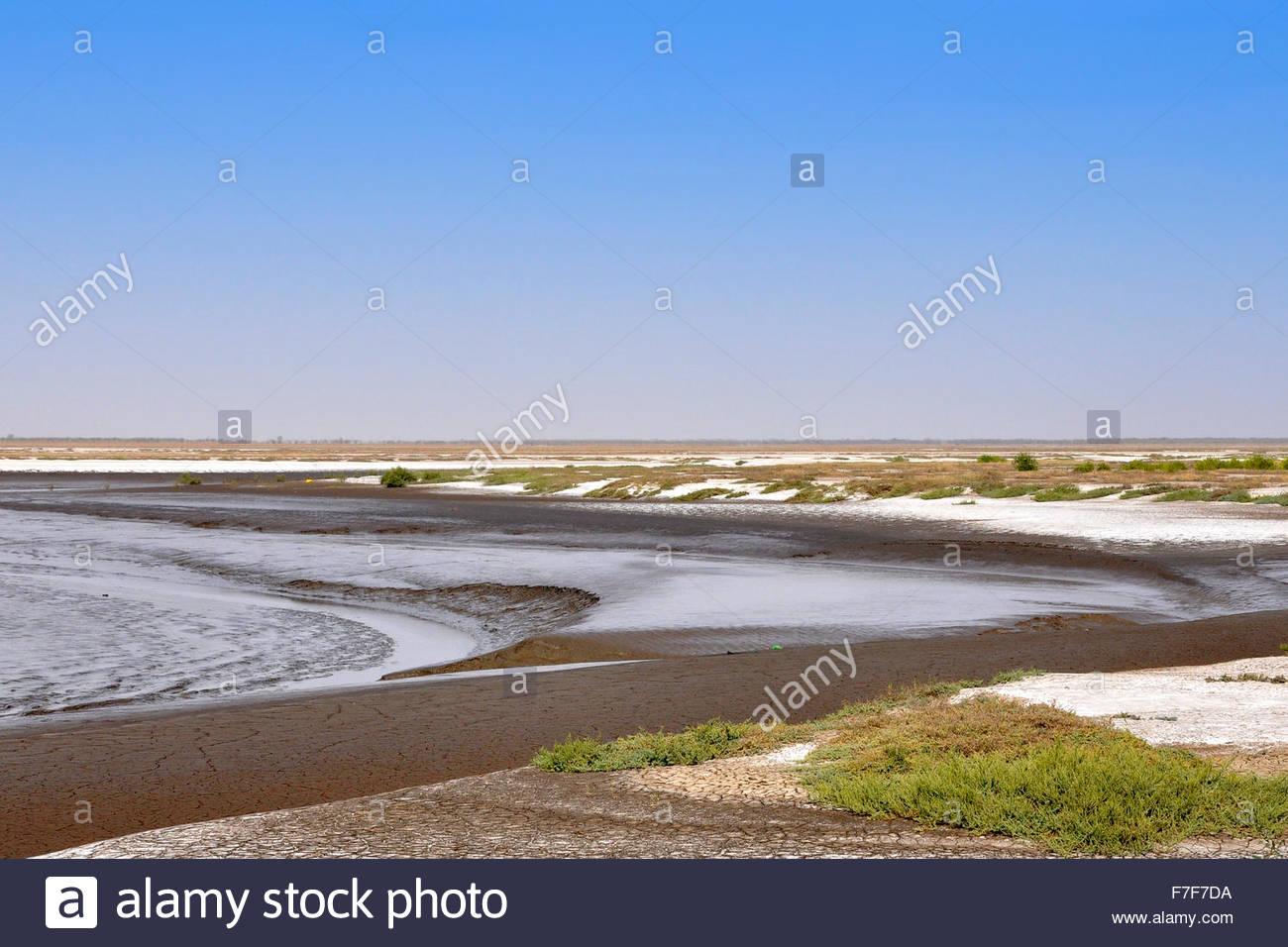 Gujarat,desert surrounding Lothal - Stock Image