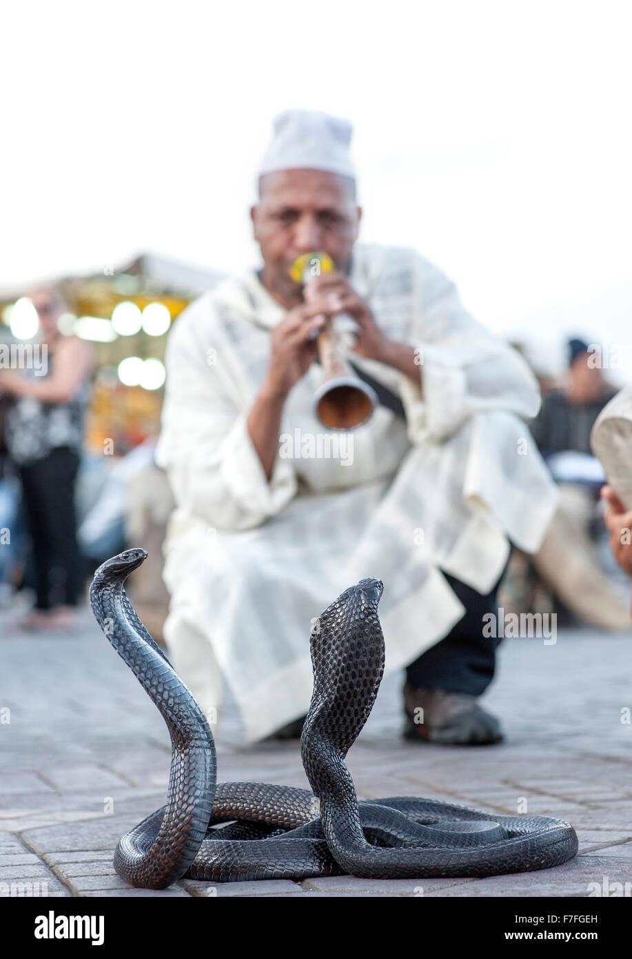 Snake charmer and cobras in Jemaa El Fna Square in Marrakech, Morocco. - Stock Image