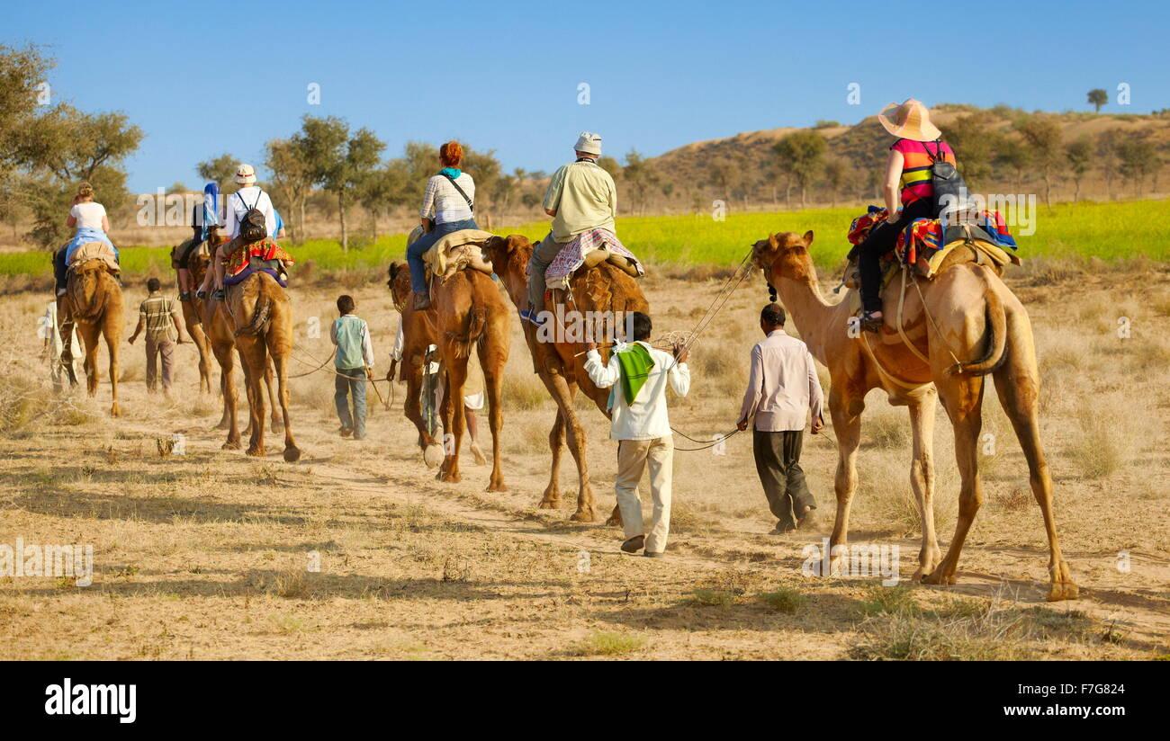 Camel caravan safari ride with tourists in Thar Desert near Jaisalmer, India - Stock Image