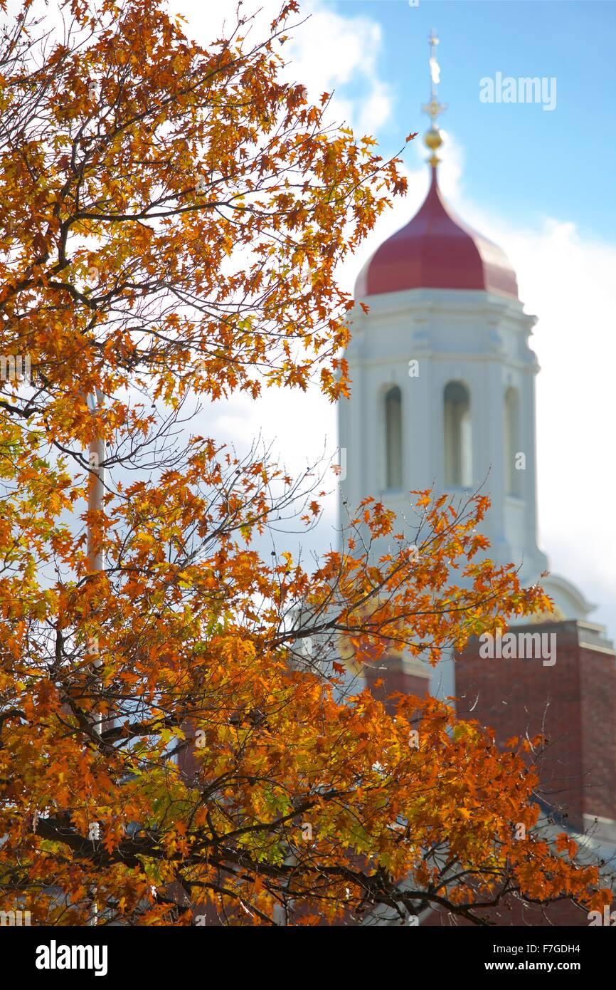 Autumn at Harvard University in Cambridge, Massachusetts near Boston - Stock Image