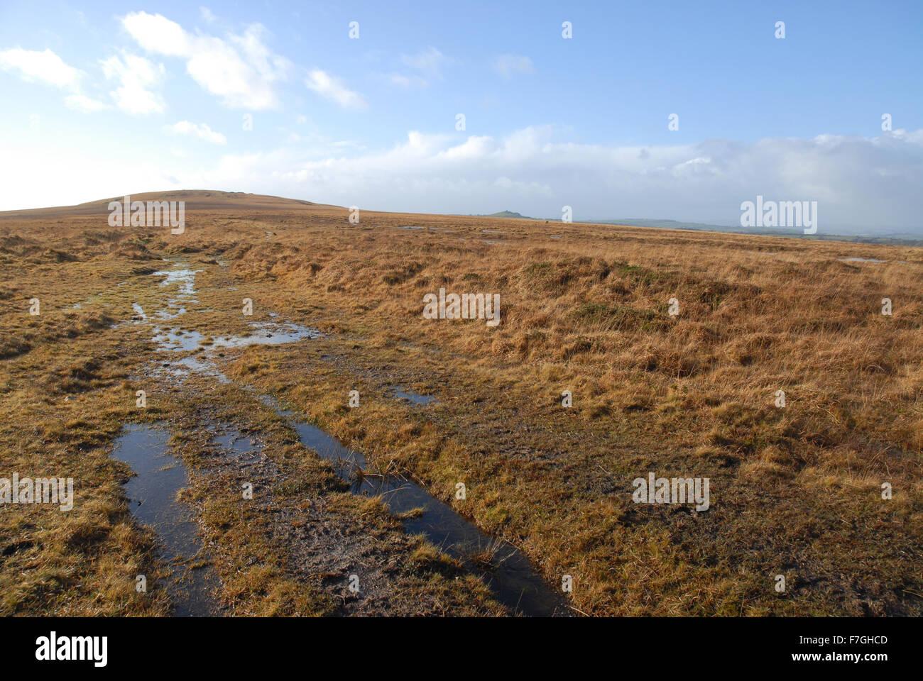 The moors in winter, Dartmoor National Park, Devon, England - Stock Image