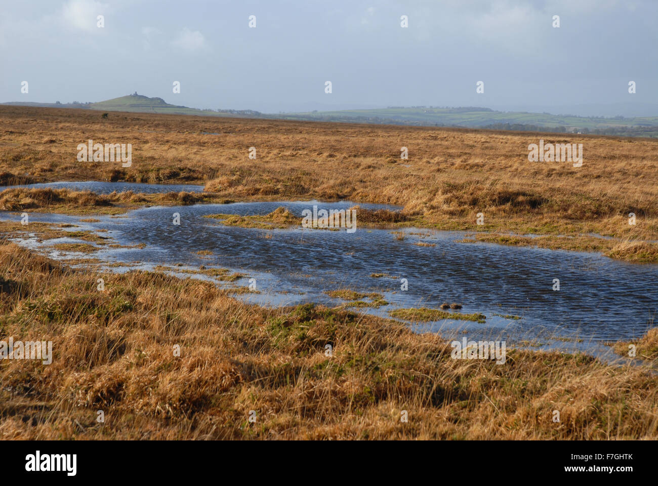 The moors in winter, Dartmoor National Park, Devon, England Stock Photo