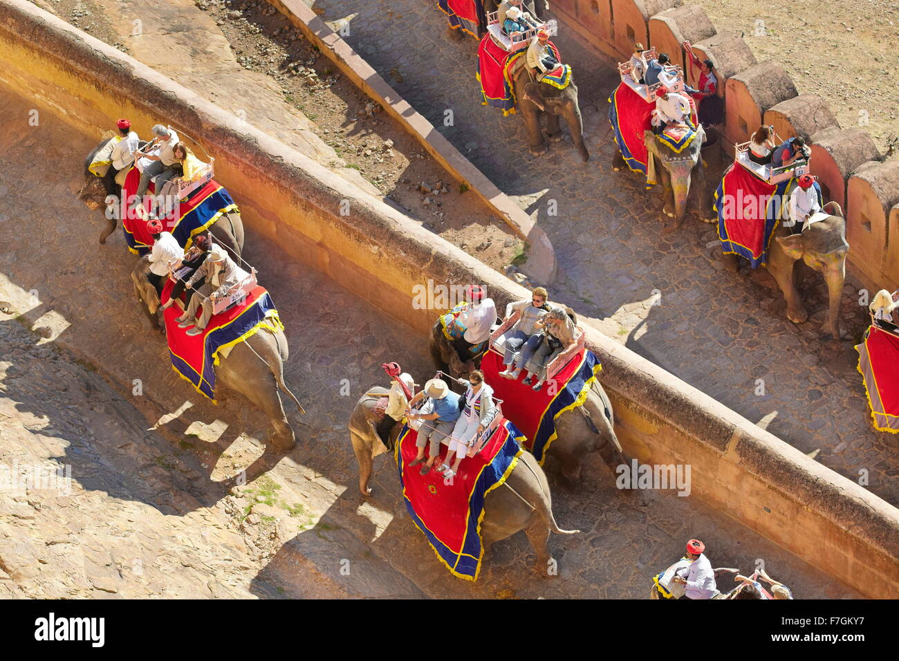 Elephants carrying tourists to the Amber Fort in Jaipur, Rajasthan, India - Stock Image