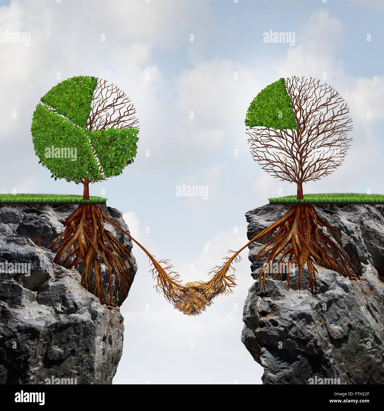 Business agreement concept and global connection financial success symbol as two trees shaped as tree pie charts - Stock Image