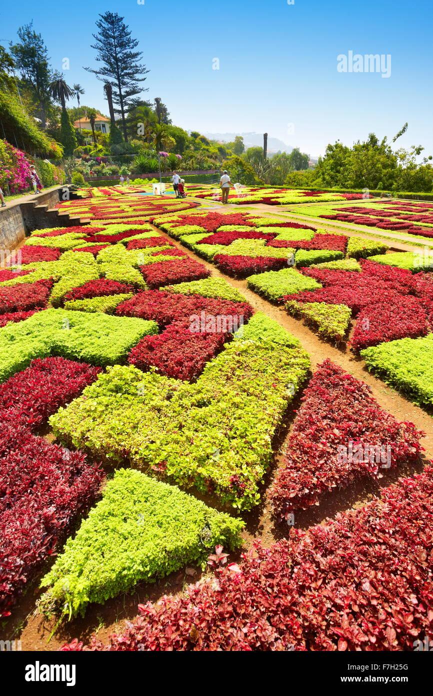 Botanical Garden - Funchal, Madeira Island, Portugal - Stock Image