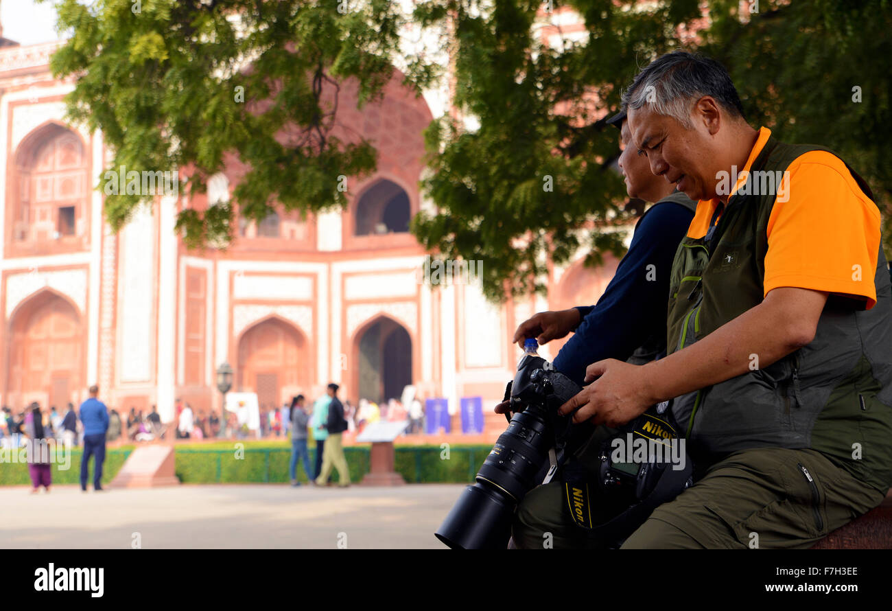 Professional photographer watching camera display - Stock Image
