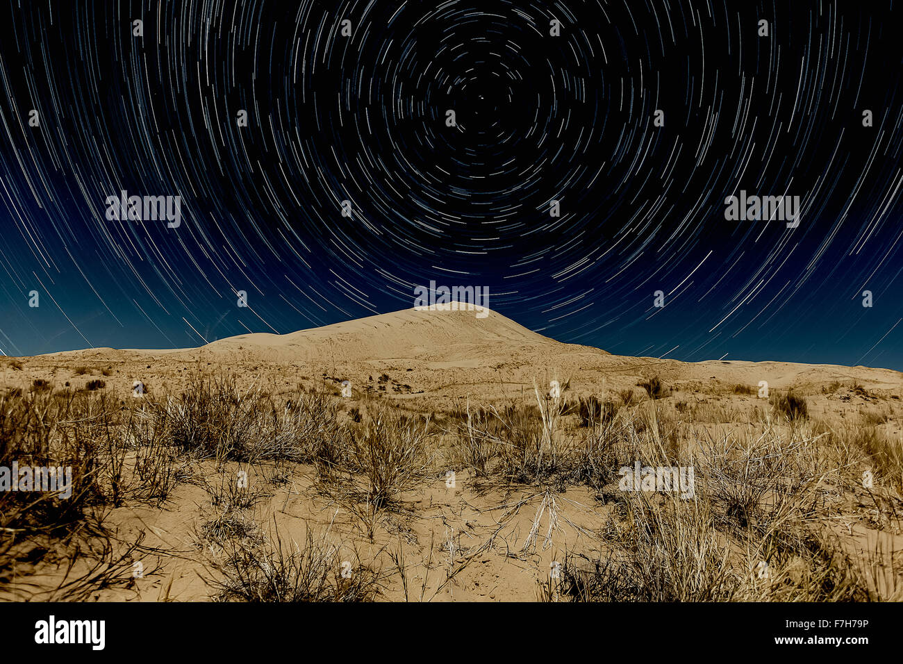 Kelso Dunes, Mojave National Preserve with star trails Stock Photo