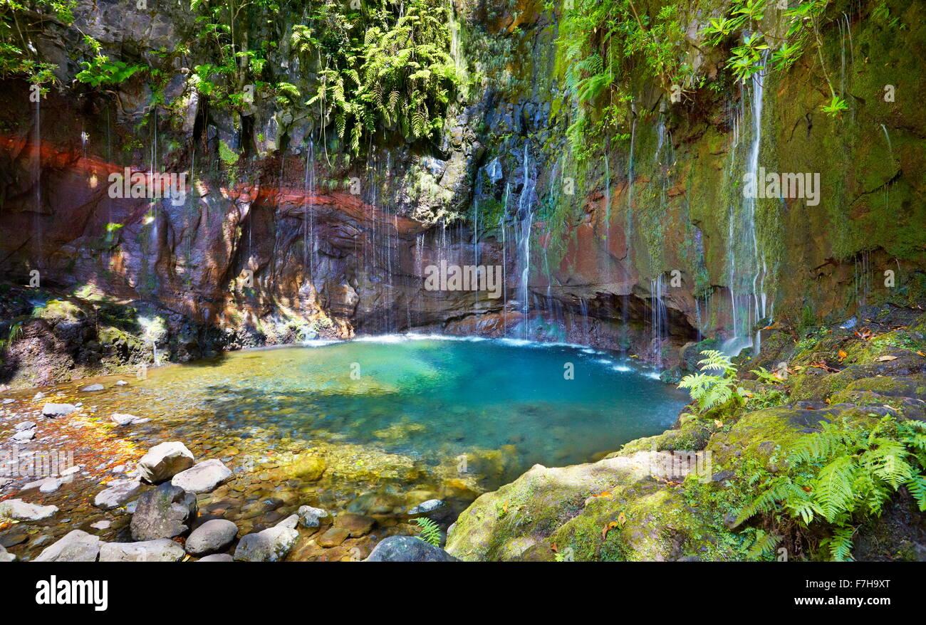 Levada 25 fountains, Rabacal, Madeira Island, Portugal - Stock Image