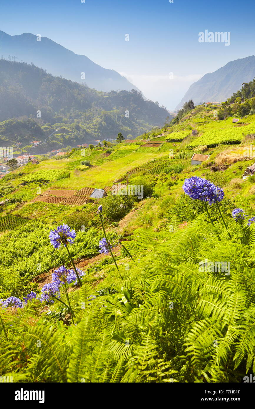 Landscape view near Sao Vicente, Madeira Island, Portugal - Stock Image