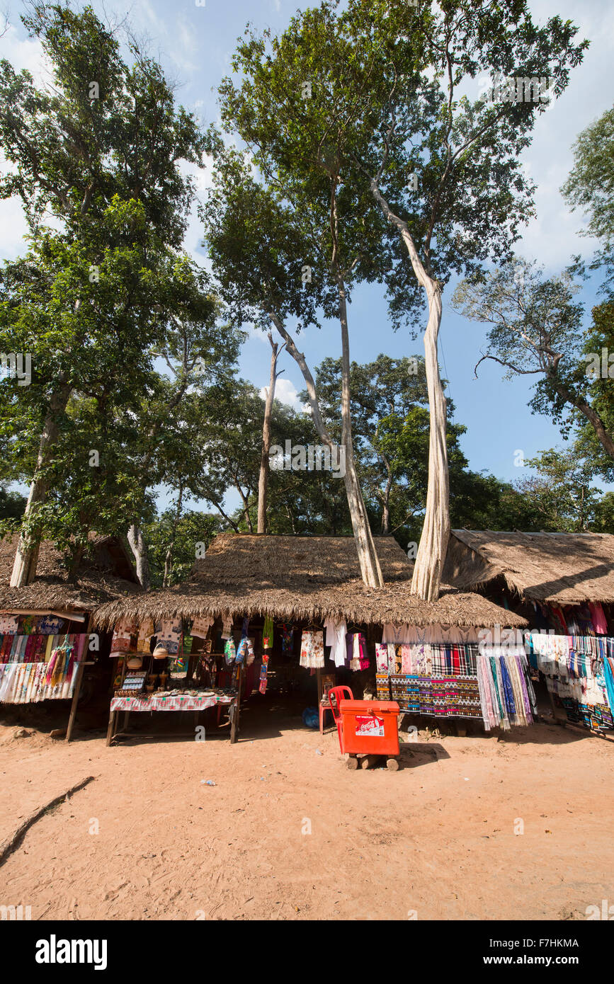 Hut with a tree through it at Koh Ker Temple, Siem Reap, Cambodia - Stock Image