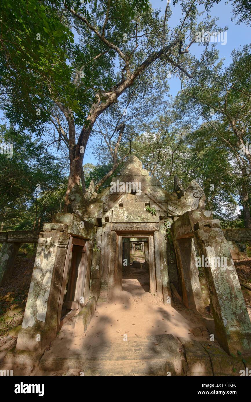 The hidden jungle temple of Prasat Kra Chap at Koh Ker, Siem Reap, Cambodia - Stock Image