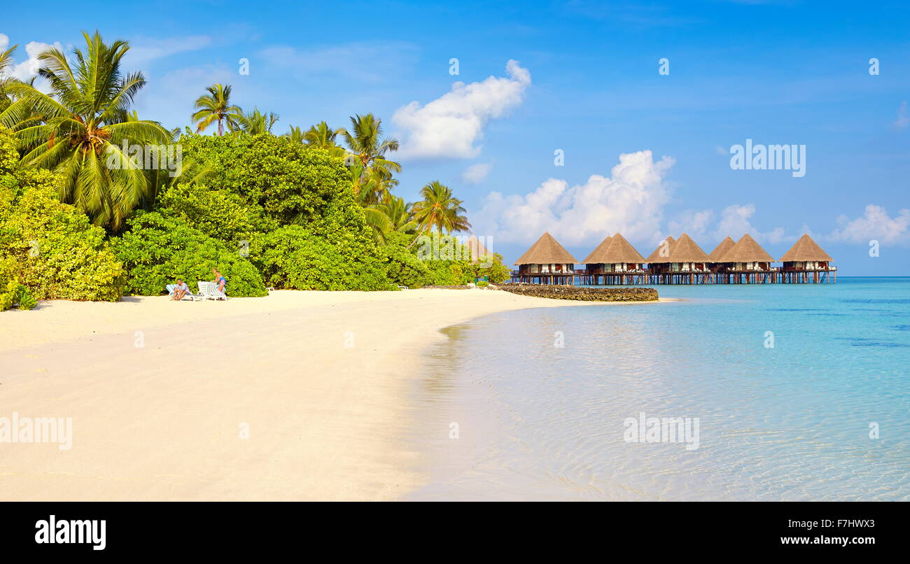Maldives Island, tropical beach - Stock Image