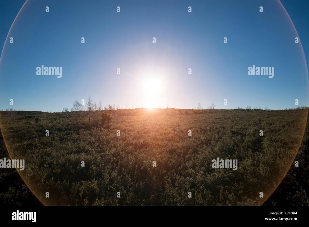 circular lens flare - Stock Image