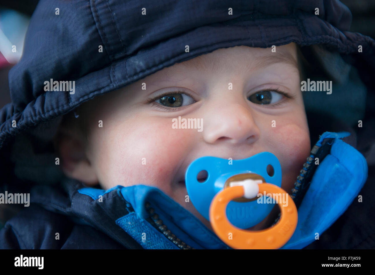 toddler boy with pacifier in his mouth portrait stock photo