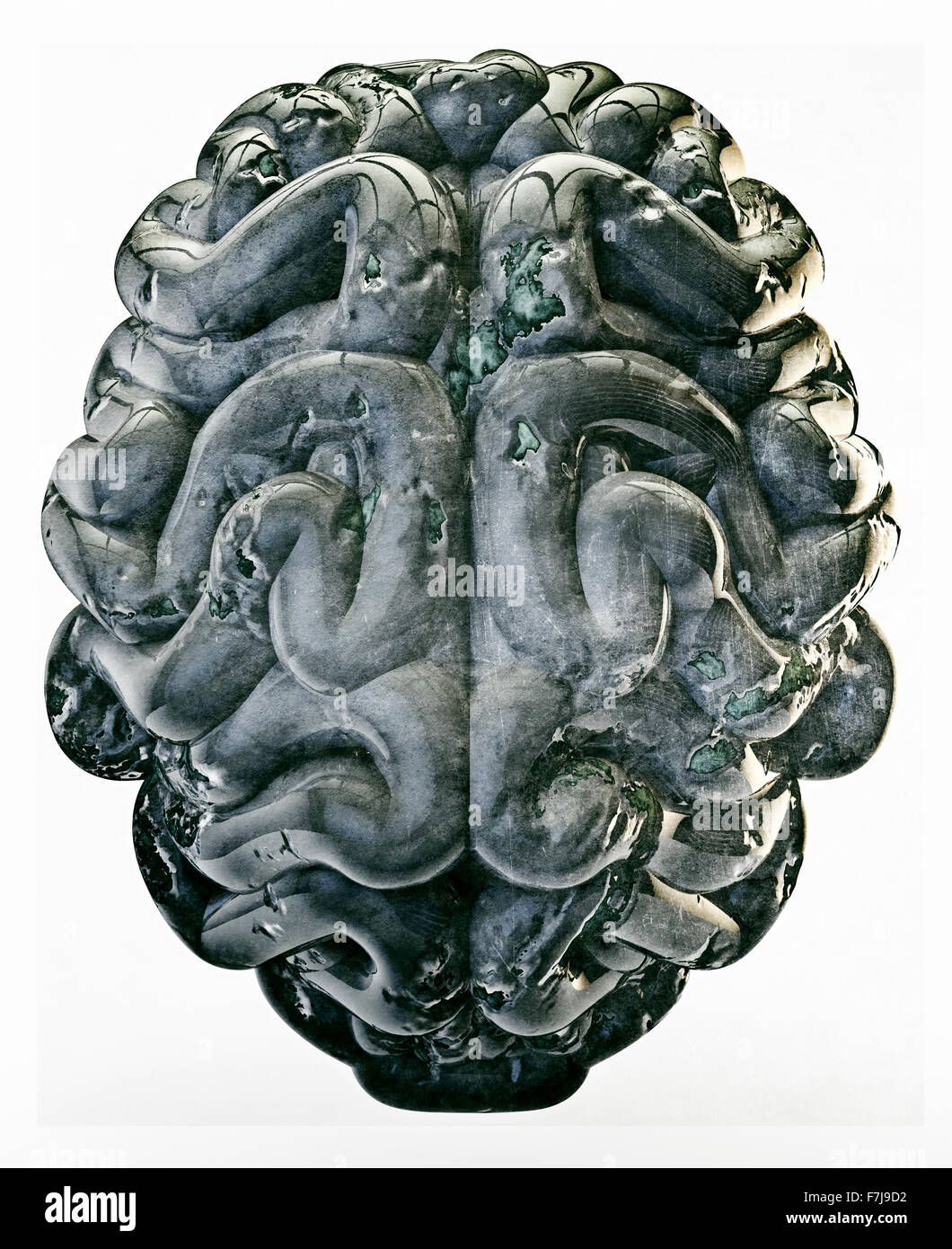 Grunge brain / 3D render of brain isolated on white - Stock Image