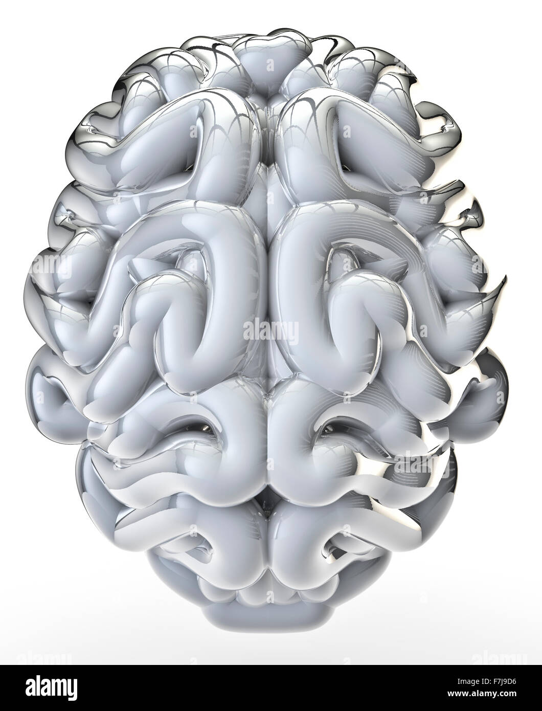 White glossy brain / 3D render of brain isolated on white - Stock Image
