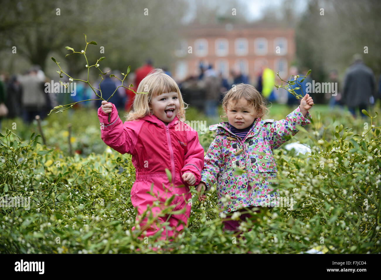 Tenbury Wells Mistletoe market Fun in the Mistletoe for Evie Haycocks aged 2 of Powis and Alice Ng aged 2 of London - Stock Image