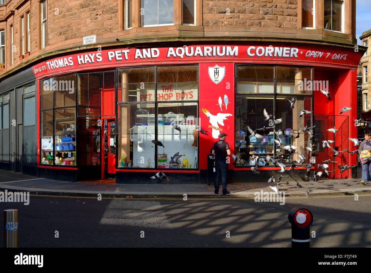 thomas hays pet shop aquarium corner glasgow uk - Stock Image