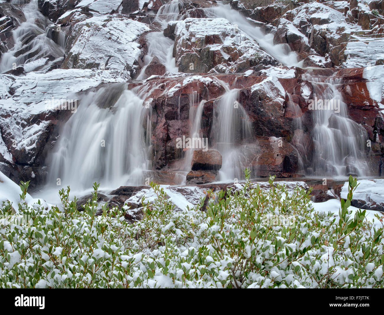 Glen Alpine Falls minutes after fresh snwfall. Lake Tahoe, California - Stock Image