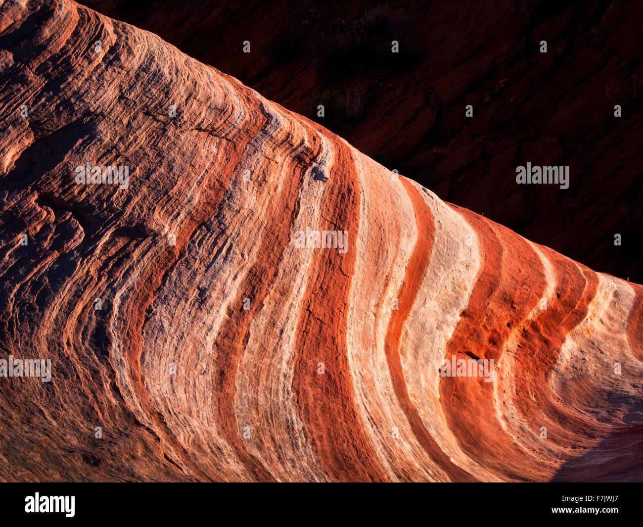 Sandstone formations at the Firewave. Valley of Fire State Park, Nevada - Stock Image