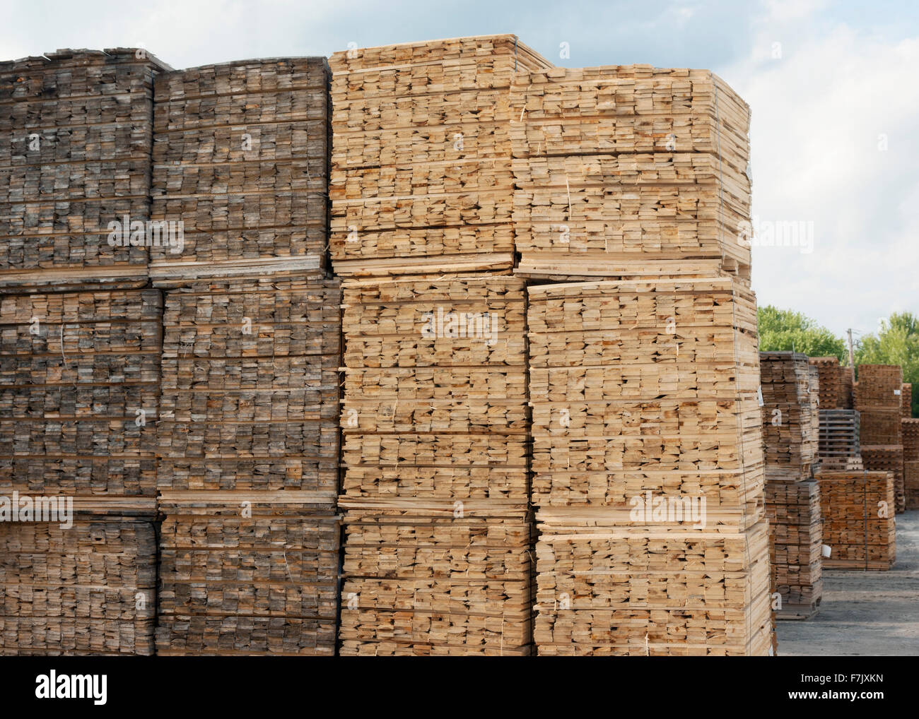 wooden planks stacked - Stock Image